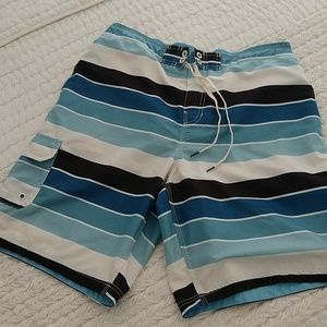 Speedo Men TurboDri Colorblock Sky Swim Trunks Lg